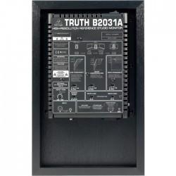 B2031A 2 Yollu 265 Watt Ev Tipi Aktif Referans Monitör - Thumbnail