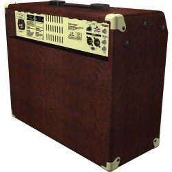 ULTRACOUSTIC ACX900 90 Watt 2 Kanal Stereo Efektli Akustik Gitar Amfisi - Thumbnail