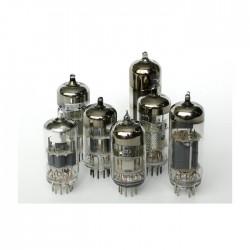 Bugera - EL34 Amplikatör Lambası