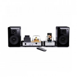 Fatman by TL Audio - iTube MkII - Speakers