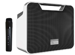 König - K-350 100 Watt Taşınabilir Portatif Ses Sistemi - El Mikrofonlu