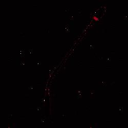 Sennheiser - Sennheiser MEG Gooseneck Kürsü Mikrofonu
